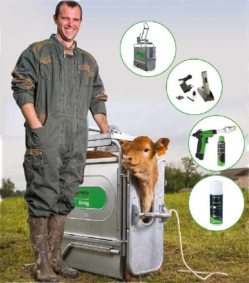 Élevage et bien-être bovins, faut-il ou non s'embarrasser de l'écornage?