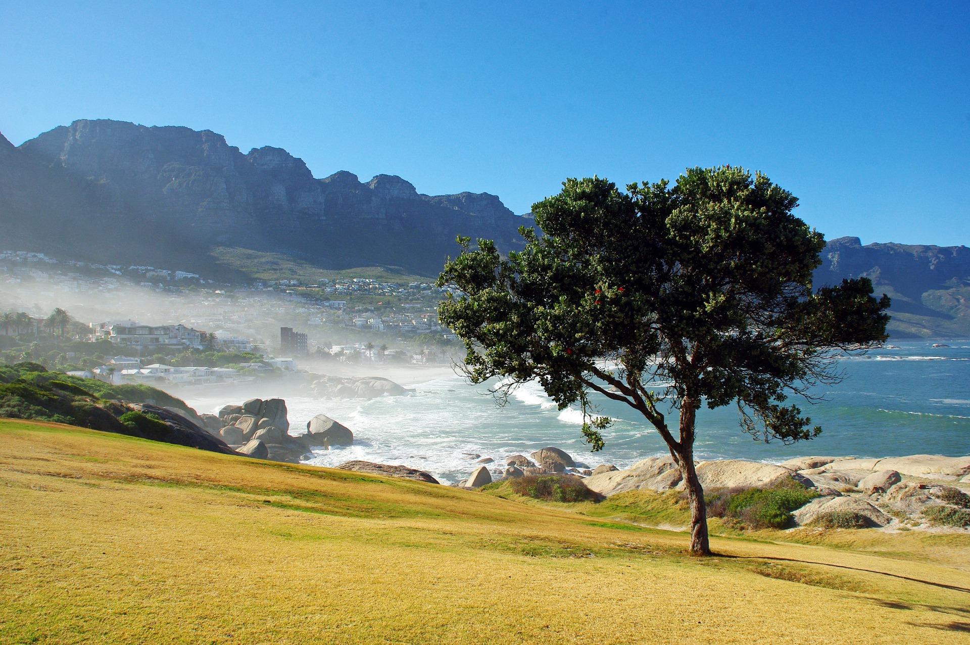 Partir à l'assaut des meilleurs sites de plongée d'Afrique du Sud